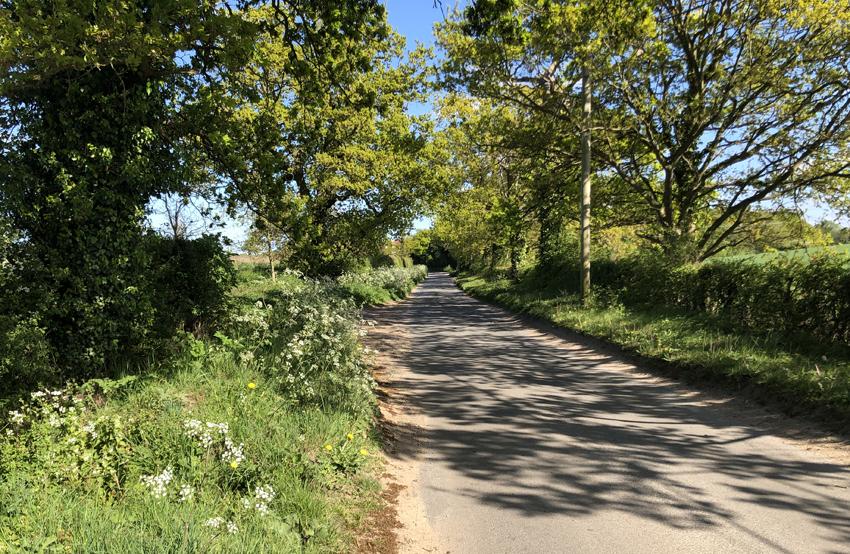 rural-road3